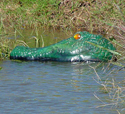 Gatorguard Deployed in Pond