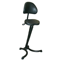 RISON Sit-Stand Stool (Classic)  sc 1 st  ErgoCanada & ErgoCanada.com Online Product Catalog - Furniture - Chairs ... islam-shia.org