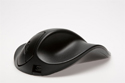 Handshoe Mouse - front view of black model