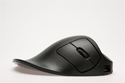Handshoe Mouse - side view of black model