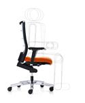Seat Tilt Range of Motion