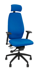Positiv Plus High Back Executive Chair with Headrest - Profile View