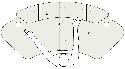 Locus Sphere Desk - Dimensions