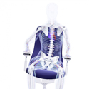 P PUREis3 PU213 Series Chair - Keeps Joints Moving