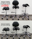 Kanewell Twin Adjustable Saddle Stool - Height Adjustment Ranges