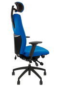 Positiv Plus High Back Executive Chair with Headrest - Rear Profile View